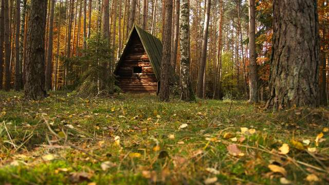 Forestcabin in autumn Time Lapse 4K/Ultra HD