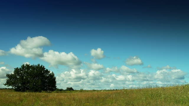 Summer clouds move through natural landscape – pan
