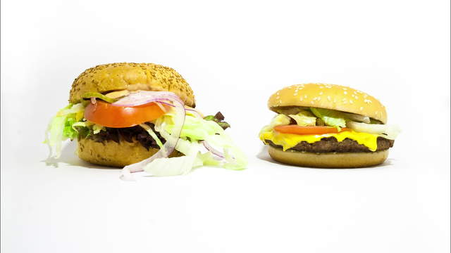 Two Rotting Hamburgers Decomposition 4K Video